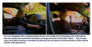Windowshade Device